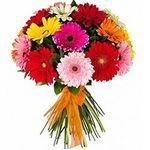 Цветы по видам - цветы и букеты на roza.pl.ua