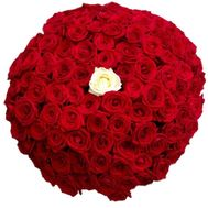 100 red roses with one white - flowers and bouquets on roza.pl.ua