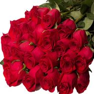 25 Meter Roses - flowers and bouquets on roza.pl.ua