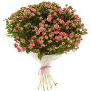 51 розовая кустовая роза - цветы и букеты на roza.pl.ua