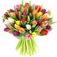 Bouquet of 51 tulips - flowers and bouquets on roza.pl.ua