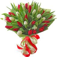 Red and white tulips - flowers and bouquets on roza.pl.ua