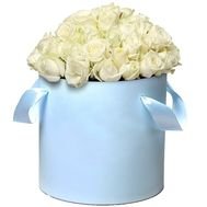 51 white rose in a hat box - flowers and bouquets on roza.pl.ua