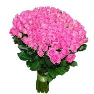 VIP bouquet of 151 pink roses - flowers and bouquets on roza.pl.ua
