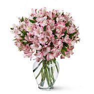 Букет из 19 альстромерий - цветы и букеты на roza.pl.ua