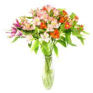 Букет из 13 альстромерий - цветы и букеты на roza.pl.ua