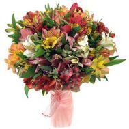 Букет из 51 альстромерии - цветы и букеты на roza.pl.ua