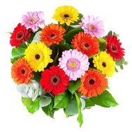 Bouquet of 15 gerberas - flowers and bouquets on roza.pl.ua