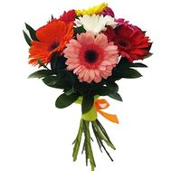 Bouquet of 7 gerberas - flowers and bouquets on roza.pl.ua