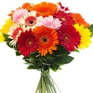 Bouquet of 35 gerberas - flowers and bouquets on roza.pl.ua