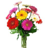 Bouquet of 11 gerberas - flowers and bouquets on roza.pl.ua