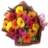 Bouquet of 25 gerberas - flowers and bouquets on roza.pl.ua