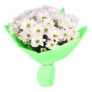 Bouquet of 7 chrysanthemums - flowers and bouquets on roza.pl.ua