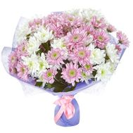 Bouquet of 15 chrysanthemums - flowers and bouquets on roza.pl.ua