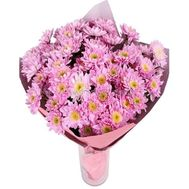 Bouquet of 13 pink chrysanthemums - flowers and bouquets on roza.pl.ua