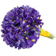 Букет из 51 ириса - цветы и букеты на roza.pl.ua
