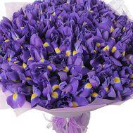 Букет із 101 ірису - цветы и букеты на roza.pl.ua