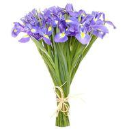 Букет из 25 ирисов - цветы и букеты на roza.pl.ua