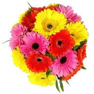 Bouquet of 19 gerberas - flowers and bouquets on roza.pl.ua