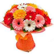 Bouquet of 21 gerberas - flowers and bouquets on roza.pl.ua