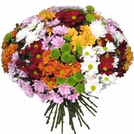 Bouquet of 35 chrysanthemums - flowers and bouquets on roza.pl.ua
