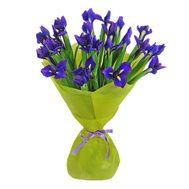 Букет из 21 ириса - цветы и букеты на roza.pl.ua