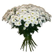 Bouquet of 19 chamomiles - flowers and bouquets on roza.pl.ua