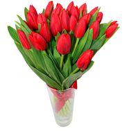 Bouquet of 25 Tulips - flowers and bouquets on roza.pl.ua