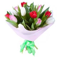 Bouquet of 15 Tulips - flowers and bouquets on roza.pl.ua