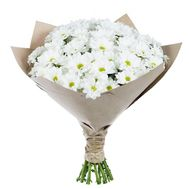 Bouquet of 15 chamomiles - flowers and bouquets on roza.pl.ua