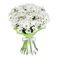 Bouquet of 11 chamomiles - flowers and bouquets on roza.pl.ua