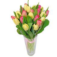 Букет из 19 тюльпанов - цветы и букеты на roza.pl.ua