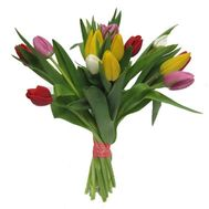 Bouquet of 17 Tulips - flowers and bouquets on roza.pl.ua