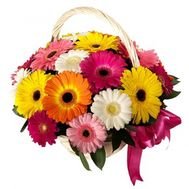 Basket of 25 gerberas - flowers and bouquets on roza.pl.ua