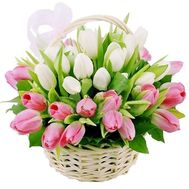 Basket of 39 white and pink tulips - flowers and bouquets on roza.pl.ua