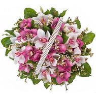 Basket of 19 Orchids - flowers and bouquets on roza.pl.ua