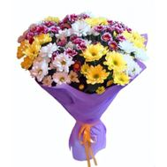 Bouquet of 25 multi-colored chrysanthemums - flowers and bouquets on roza.pl.ua