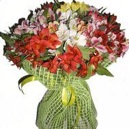 Букет из 35 альстромерий - цветы и букеты на roza.pl.ua