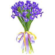 Букет из 19 ирисов - цветы и букеты на roza.pl.ua