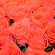 Orange roses by the piece - flowers and bouquets on roza.pl.ua