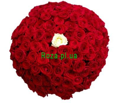 """100 red roses with one white"" in the online flower shop roza.pl.ua"