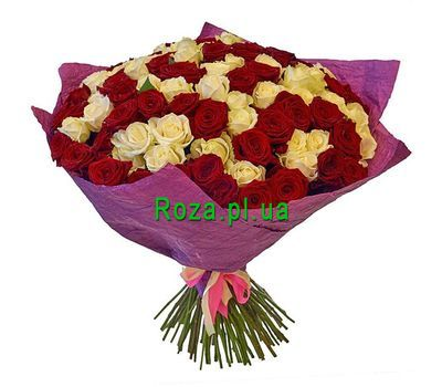 """""""101 red and white rose"""" in the online flower shop roza.pl.ua"""