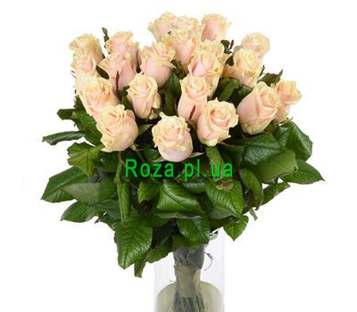 """21 cream-colored roses"" in the online flower shop roza.pl.ua"