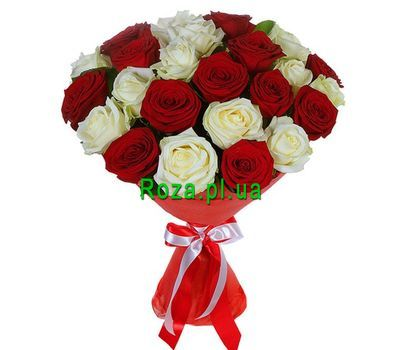 """25 red and white roses"" in the online flower shop roza.pl.ua"