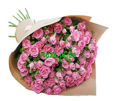 """""""Bouquet of bush roses in paper"""" in the online flower shop roza.pl.ua"""