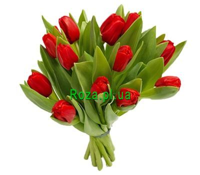 """""""Bouquet of 13 Tulips"""" in the online flower shop roza.pl.ua"""