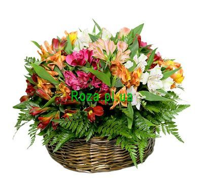 """Basket of alstromeries"" in the online flower shop roza.pl.ua"