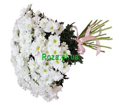 """Bouquet of 21 daisies"" in the online flower shop roza.pl.ua"