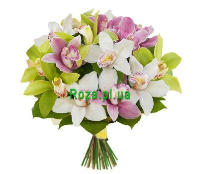"""""""Bouquet of orchids"""" in the online flower shop roza.pl.ua"""
