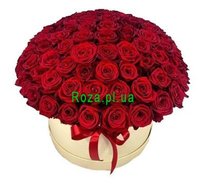 """101 red rose in a box"" in the online flower shop roza.pl.ua"